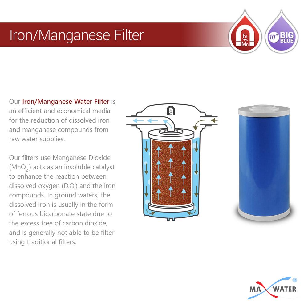 10-inch-big-blue-femg-filter-1000