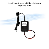 220 V transformer additional charges replacing 110 V