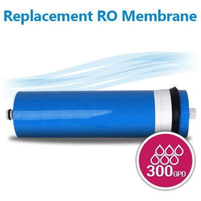 "TFC 2412-300 GPD Commercial Reverse Osmosis Membrane, Size 11.75"" x 2.4"""
